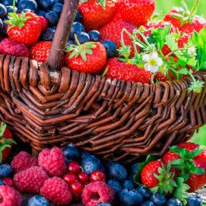 Owoce świeże